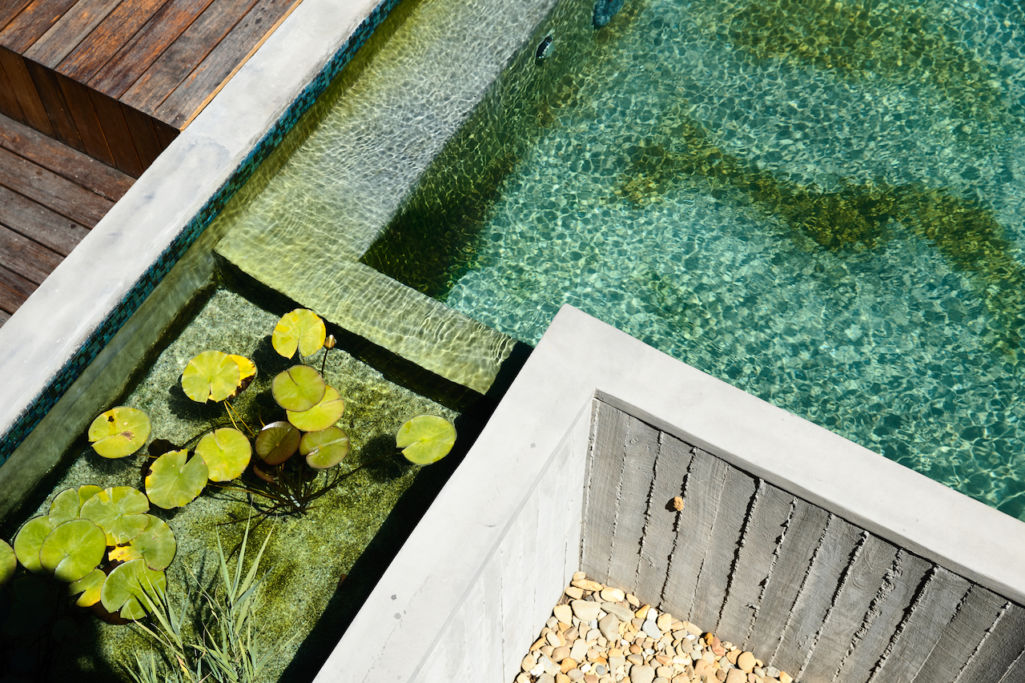 Pros and Cons of Different Pool Types - Eco Outdoor Hints & Tips